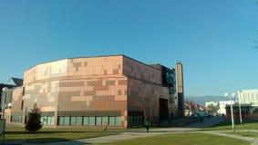Το κτήριο βιβλιοθηκών Στοκ φωτογραφία με δικαίωμα ελεύθερης χρήσης