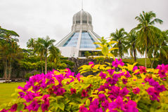 Το κτήριο είναι ένα μουσείο των γατών Κόκκινα ρόδινα λουλούδια Kuching, Μπόρνεο, Sarawak, Μαλαισία Στοκ φωτογραφίες με δικαίωμα ελεύθερης χρήσης