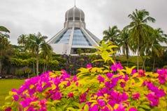 Το κτήριο είναι ένα μουσείο των γατών Κόκκινα ρόδινα λουλούδια Kuching, Μπόρνεο, Sarawak, Μαλαισία Στοκ εικόνα με δικαίωμα ελεύθερης χρήσης