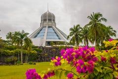 Το κτήριο είναι ένα μουσείο των γατών Κόκκινα ρόδινα λουλούδια Kuching, Μπόρνεο, Sarawak, Μαλαισία Στοκ Εικόνες