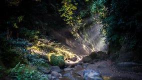 Το κυματιστό φως Στοκ φωτογραφία με δικαίωμα ελεύθερης χρήσης