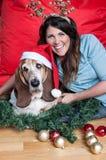 Το κυνηγόσκυλο μπασέ φορά το καπέλο santa στα Χριστούγεννα στοκ φωτογραφίες με δικαίωμα ελεύθερης χρήσης