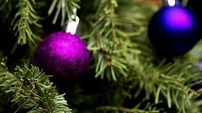 Το κωνοφόρο δέντρο με τις ζωηρόχρωμες σφαίρες περιστρέφεται ελεύθερη απεικόνιση δικαιώματος