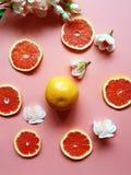 Το κόκκινο γκρέιπφρουτ τεμαχίζει τα ζωηρόχρωμα πιάτα καλύπτει το κίτρινο φλυτζάνι στο ρόδινο κόκκινο απεικόνισης υποβάθρου εμβλημ στοκ φωτογραφίες με δικαίωμα ελεύθερης χρήσης