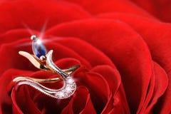 το κόκκινο δαχτυλίδι αυξήθηκε σπινθήρισμα Στοκ Εικόνα