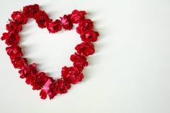 το κόκκινο καρδιών αυξήθηκε Στοκ Εικόνες
