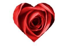το κόκκινο καρδιών αυξήθηκε διανυσματική απεικόνιση
