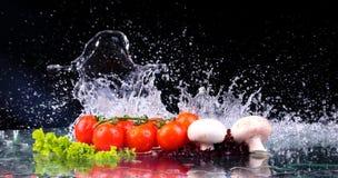 Το κόκκινο κεράσι ντοματών, τα μανιτάρια και η πράσινη φρέσκια σαλάτα με την πτώση νερού καταβρέχουν στοκ φωτογραφία με δικαίωμα ελεύθερης χρήσης