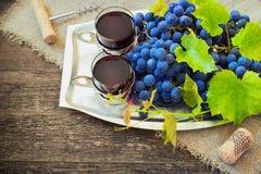 Το κόκκινο κρασί και τα σταφύλια στον τρύγο που θέτει με βουλώνουν Στοκ Φωτογραφίες