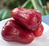 το κόκκινο μήλων αυξήθηκε Στοκ φωτογραφίες με δικαίωμα ελεύθερης χρήσης