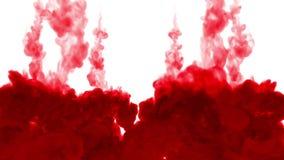 Το κόκκινο μελάνι διαδίδει στο νερό από πάνω προς τα κάτω σε έναν κύκλο, σε ένα άσπρο υπόβαθρο σαν άλφα μεταλλίνη luma χρήσης καν φιλμ μικρού μήκους