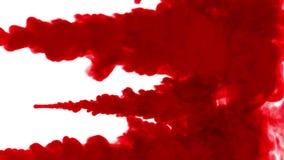 Το κόκκινο μελάνι εγχέει στο νερό στο άσπρο υπόβαθρο τρισδιάστατη ζωτικότητα με τη μεταλλίνη luma ως άλφα κανάλι σε σε αργή κίνησ απεικόνιση αποθεμάτων