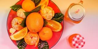 Το κόκκινο πιάτο εμβλημάτων των πορτοκαλιών και tangerines με τα πράσινα φύλλα σε μια ελαφριά τοπ άποψη υποβάθρου αντιγράφουν το  στοκ εικόνες με δικαίωμα ελεύθερης χρήσης