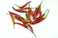 Το κόκκινο πικάντικο τσίλι, απομονώνει στο άσπρο υπόβαθρο Στοκ Εικόνα