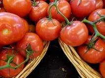 Το κόκκινο σχίζει τις ντομάτες στο καλάθι στοκ εικόνες