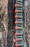 Το κόκκινο τουφέκι σφαιρών Στοκ Φωτογραφία