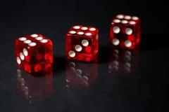 Το κόκκινο SIC BO που παίζει χωρίζει σε τετράγωνα με την αντανάκλαση Στοκ Εικόνες