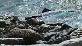 Το κύμα θάλασσας κυλά στους μεγάλους βράχους στην παραλία με την κίνηση της κάμερας mp4 απόθεμα βίντεο