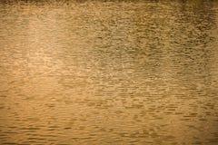 Το κύμα στο νερό Στοκ Εικόνες