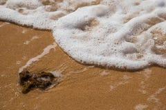Το κύμα φθάνει σε μια πέτρα Στοκ φωτογραφία με δικαίωμα ελεύθερης χρήσης