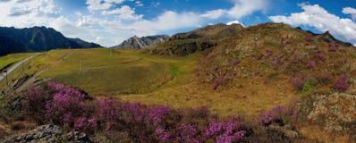 Το κύριο φεστιβάλ άνοιξη στα βουνά Altai Στοκ φωτογραφίες με δικαίωμα ελεύθερης χρήσης