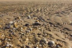 Το κύρτωμα στρώνει με άμμο την παραλία Στοκ φωτογραφία με δικαίωμα ελεύθερης χρήσης