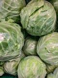 Το λάχανοήτο διευθυνμένο λάχανοπου περιλαμβάνει διάφορεςποικιλίεςτης λαχανώούς κράμβης είναι ένα φυλλώδες μπλε, κόκκινο μπλε στοκ φωτογραφία με δικαίωμα ελεύθερης χρήσης