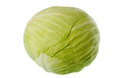 το λάχανο κάλυψε τη δροσ& Στοκ Εικόνες