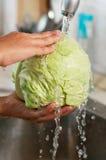 Το λάχανο πλένεται στο ύδωρ Στοκ Εικόνες