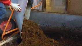 Το λίπασμα πετιέται σε ένα θερμοκήπιο απόθεμα βίντεο