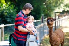 Το λατρευτό χαριτωμένο κορίτσι μικρών παιδιών και ο νέος ταΐζοντας λάμα πατέρων παιδιά καλλιεργούν Όμορφα petting ζώα παιδιών μωρ στοκ εικόνες