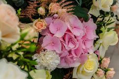 Το λεπτό υπόβαθρο του hydrangea λουλουδιών και αυξήθηκε κινηματογράφηση σε πρώτο πλάνο Στοκ Φωτογραφία