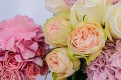 Το λεπτό υπόβαθρο του hydrangea λουλουδιών και αυξήθηκε κινηματογράφηση σε πρώτο πλάνο Στοκ Εικόνα