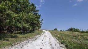 Το λευκό από το δρόμο κιμωλίας δίνει έναν λόφο σε μια σειρά με το δάσος στοκ εικόνες