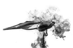 Το λευκό υποβάθρου νερού λουλουδιών μέσα κάτω από τον ακρυλικό καπνό τουλιπών χρωμάτων ραβδώνει το Μαύρο και ενός στοκ φωτογραφία με δικαίωμα ελεύθερης χρήσης