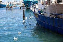 Το λιμάνι Fremantle χρησιμεύει ως ο λιμένας του Περθ Αυστραλία Στοκ φωτογραφία με δικαίωμα ελεύθερης χρήσης