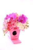το λουλούδι απομονώνει Στοκ Εικόνες