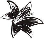 το λουλούδι απομόνωσε το τροπικό διάνυσμα Στοκ φωτογραφία με δικαίωμα ελεύθερης χρήσης