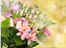 το λουλούδι ημέρας δίνει το γιο μητέρων mum Στοκ φωτογραφία με δικαίωμα ελεύθερης χρήσης