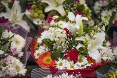 Το λουλούδι ρομαντικό αυξήθηκε λευκό Στοκ Εικόνες