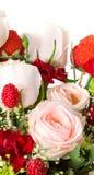 το λουλούδι ρόδινο αυξή&th Στοκ Εικόνα