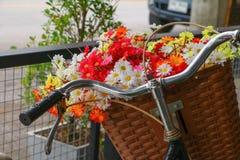 Το λουλούδι στον κλασικό τρύγο ποδηλάτων καλαθιών με το διάστημα αντιγράφων για προσθέτει το κείμενο Στοκ εικόνες με δικαίωμα ελεύθερης χρήσης
