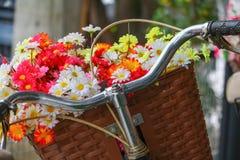 Το λουλούδι στον κλασικό τρύγο ποδηλάτων καλαθιών με το διάστημα αντιγράφων για προσθέτει το κείμενο Στοκ Εικόνες