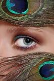 το μάτι επενδύει με φτερά peacock το s Στοκ εικόνα με δικαίωμα ελεύθερης χρήσης