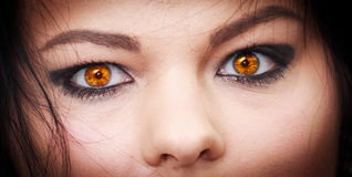 Το μάτι διαβόλων Στοκ εικόνα με δικαίωμα ελεύθερης χρήσης