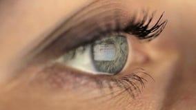 Το μάτι κοριτσιών γυναικών που φαίνεται όργανο ελέγχου, ξοδεύει το σερφ απόθεμα βίντεο