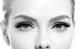 Το μάτι μαστιγώνει τη μακροεντολή προσώπου ομορφιάς γυναικών μονοχρωματική στοκ εικόνες