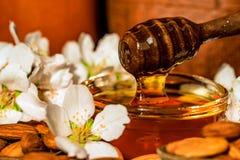 Το μέλι αμυγδάλων, τα καρύδια και τα άσπρα λουλούδια κλείνουν στοκ εικόνες