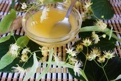 το μέλι Στοκ εικόνα με δικαίωμα ελεύθερης χρήσης
