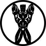 Το μέτωπο Bodybuilder θέτει Ελεύθερη απεικόνιση δικαιώματος